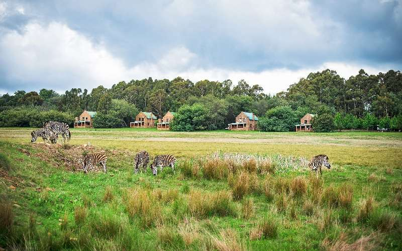 Dunkeld Country Estate in Dullstroom