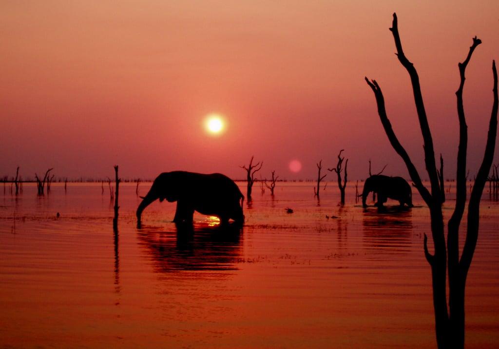 [Image: lake-kariba-sunset(1).jpg]