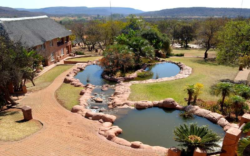 Zebra Country Lodge near Pretoria, South Africa